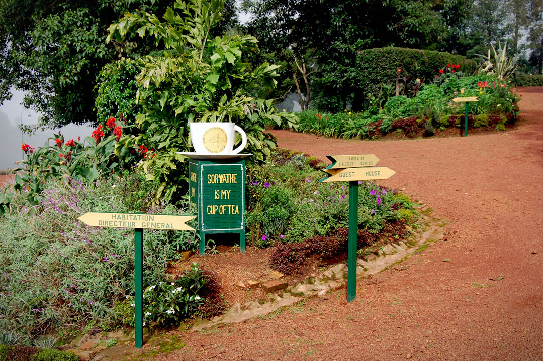 SORWATHE Guesthouse and Tea Tours